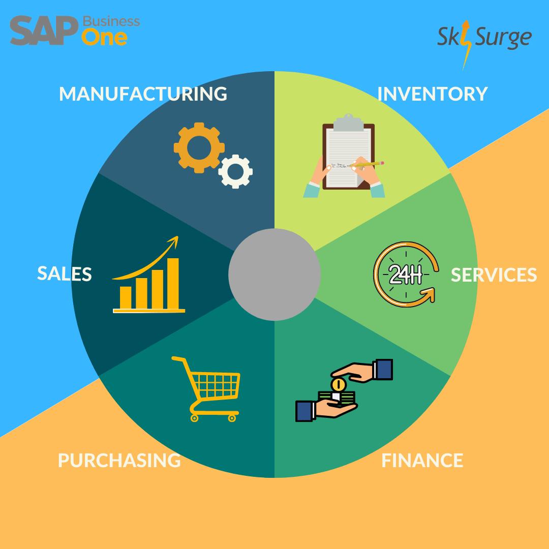 SAP B1 ERP Modules